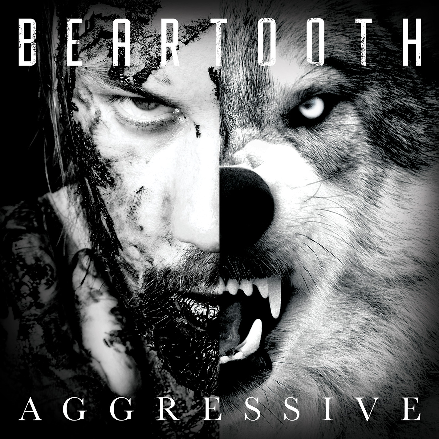 beartooth aggressive one standing review