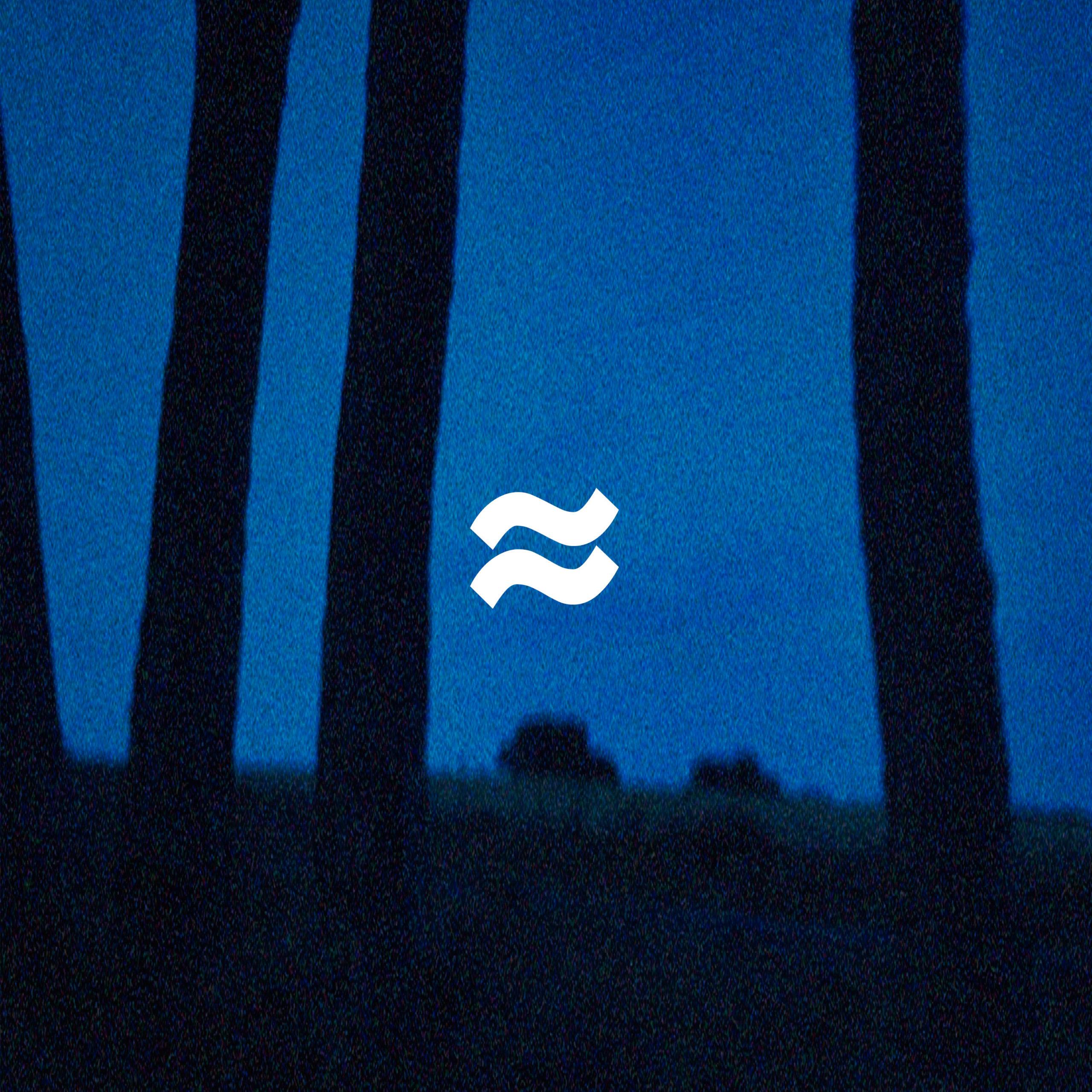 VAGUES aux portes de la nuit EP artwork